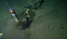 Deep-Sea Microbes Exert the Least Amount of Energy Possible to Survive