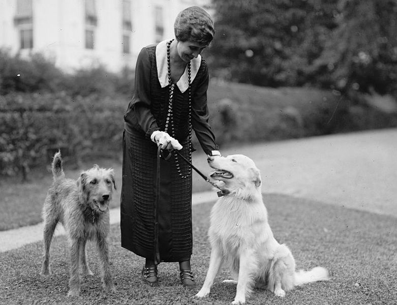 Grace Coolidge with Laddie Boy, an Airedale Terrier, and Rob Roy, a white Collie