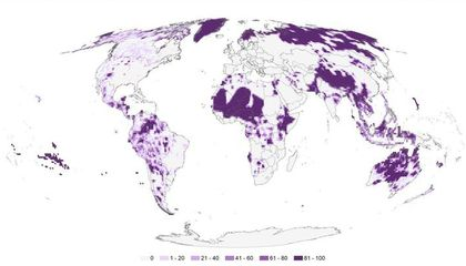 Indigenous Peoples Manage One Quarter of the Globe, Which Is Good News for Conservation