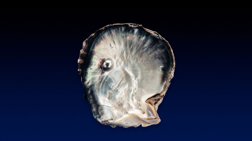 Pearl inside an upright half shell of a bivalve