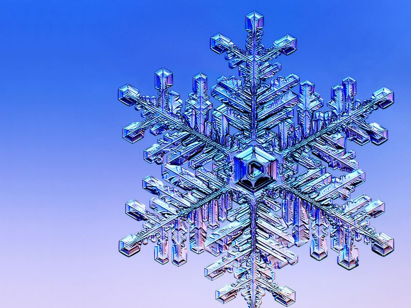 The Art And Science Of Growing Snowflakes In A Lab Science