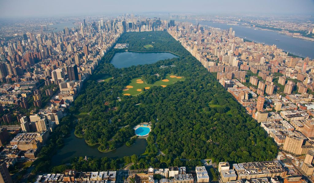 New York City's Central Park has a birding population that rivals that of many forests.