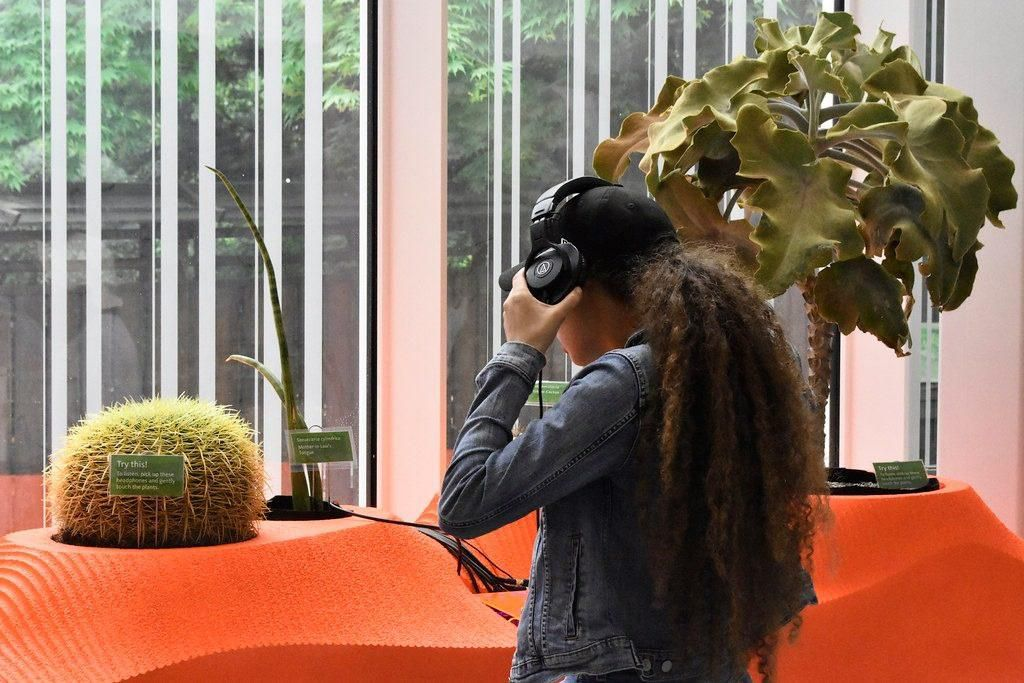 Listen to the Sounds of Succulents at the Brooklyn Botanic Garden