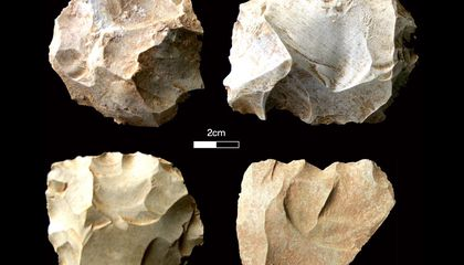Ancient Humans May Have Survived Supervolcano Eruption Nearly 74,000 Years Ago