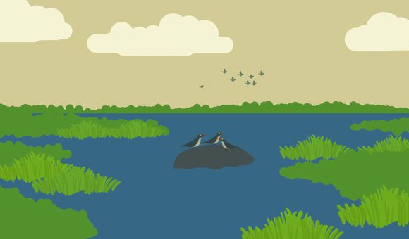 Preview thumbnail for video'Why Should Humans Care About Biodiversity Loss?