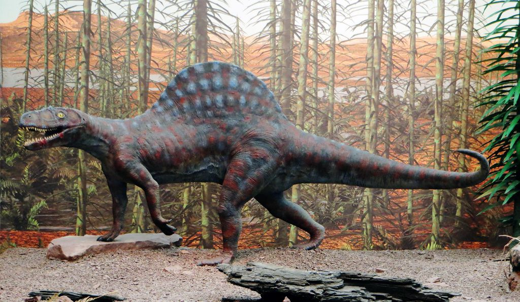 After decades, researchers finally found the culprit. It was <em>Ctenosauriscus,</em> (reconstruction above) which had very tall spines on its backbone that probably supported a sail.
