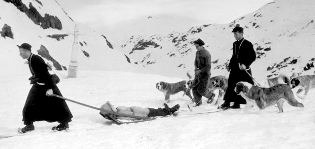 A Brief History of the St  Bernard Rescue Dog | Travel