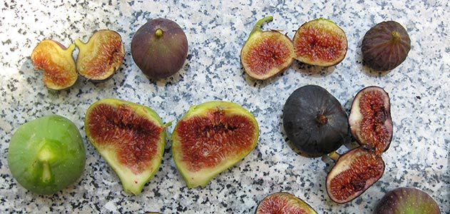 Figs Fruits Pictures