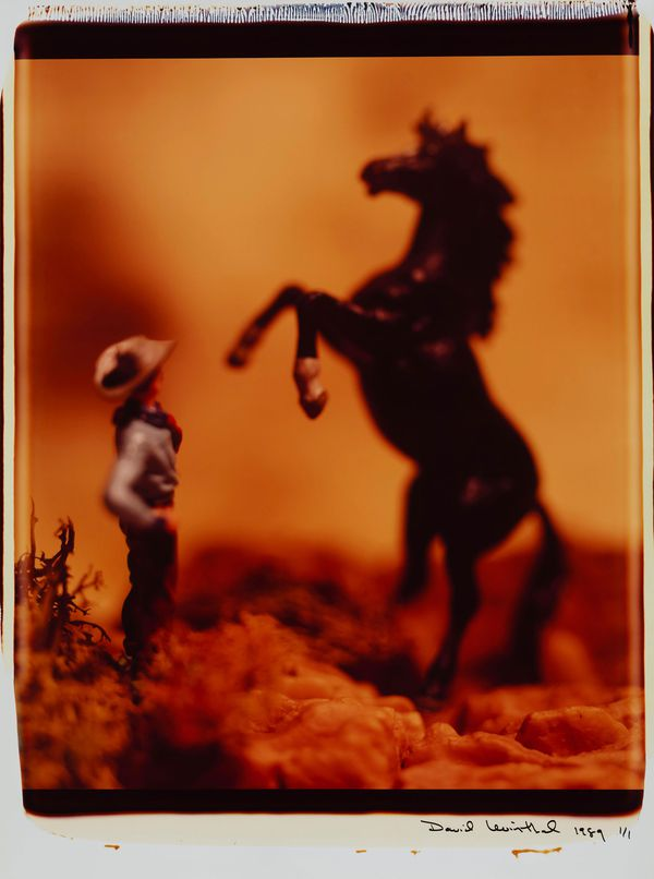 untitled_from_the_series_wild_west_1.jpg