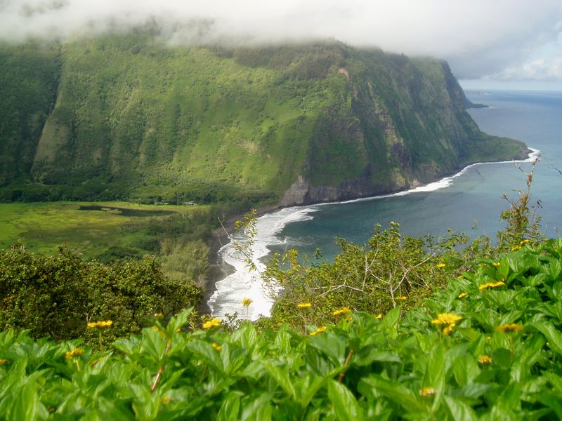 A photo from a scenic overlook on the Big Island. There is a lush, green plateau with a field of green vegetation at the bottom. On the right side, the ocean meets the base of the plateau and white waves crash into the shore.