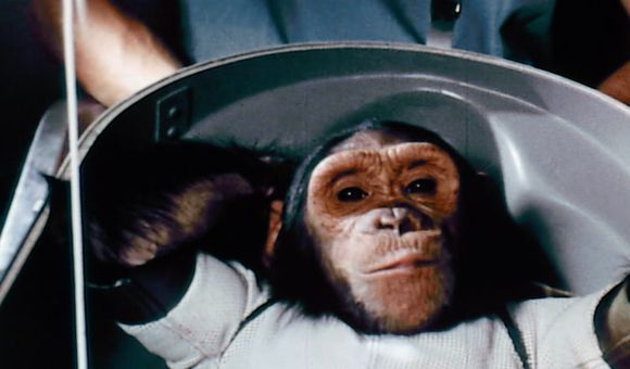 Preview thumbnail for video'NASA's First Chimp in Space