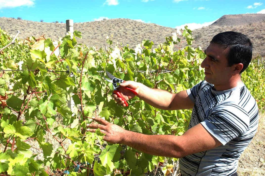 In One of the World's Oldest Winemaking Regions, a New