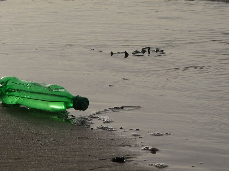 A lone green plastic bottle sits discarded near a body of water