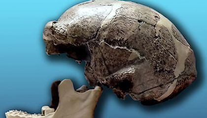 Mystery of the Lost Peking Man Fossils Solved?