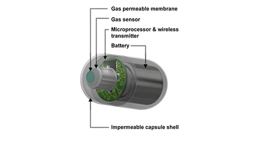 An illustration of what an electronic gas-tracking capsule might look like.