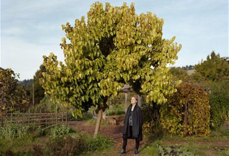 <i>Alice Waters</i> by Dave Woody