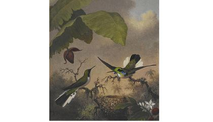 Martin Johnson Heade, Black-eared Fairy, ca. 1863-1864, oil on canvas, 12 1/4 x 10 in. Crystal Bridges Museum of American Art, Bentonville, Arkansas, 2006.89. Photography by Dwight Primiano.