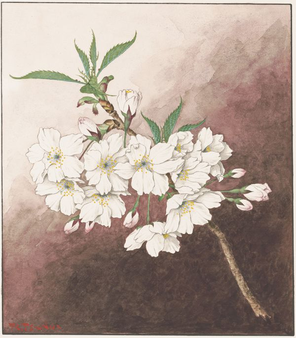 Jōnioi (Upper fragrance), 1921