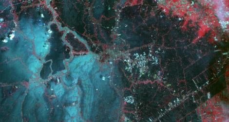 A false-color image of flooding in Bangkok, Thailand