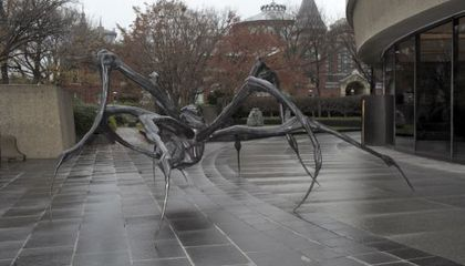 At the Hirshhorn, Crouching Spider, Hidden Meaning?