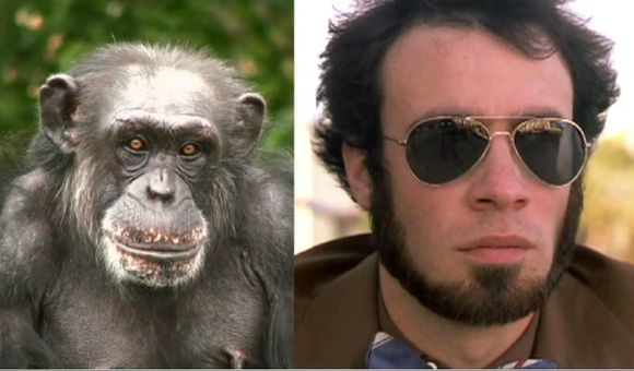 Preview thumbnail for video'Ask Smithsonian: Can Chimps Be Genetically Engineered to Be Like Humans?
