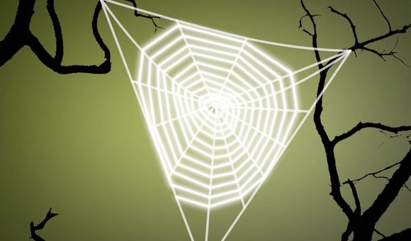 Preview thumbnail for video'Ask Smithsonian: How Do Spiders Make a Web?