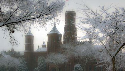 Snowy Day at the Smithsonian. Come Out and Play