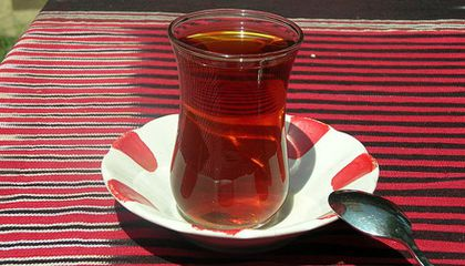 Tea and Bear Talk in Turkey