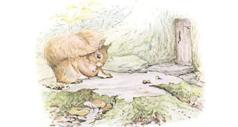 20120206115024beatrix-potter-illustration.jpg