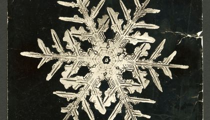 The Man Who Revealed the Hidden Structure of Falling Snowflakes