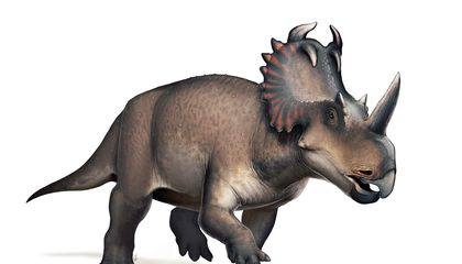 The Top Ten Dinosaur Discoveries of 2020