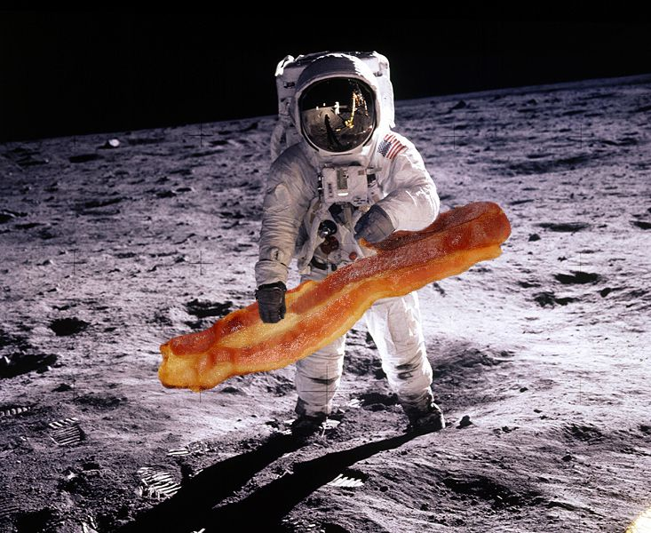 04_08_2014_space bacon.jpg