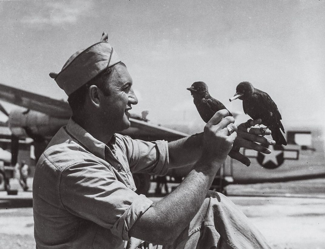 man holding magpies, one with a cigarette in its mouth