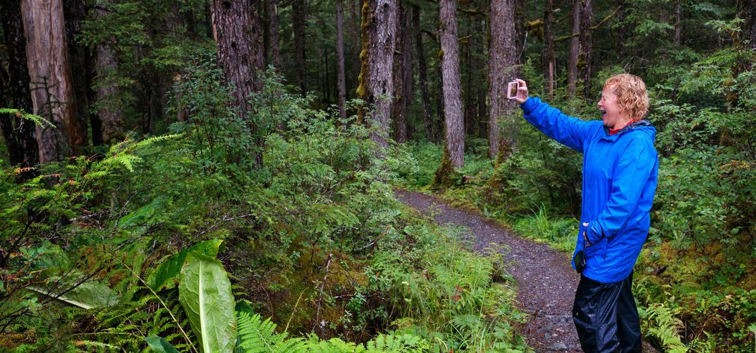 On the trail in an Alaskan rain forest