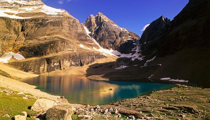 70 Percent of Western Canada's Glaciers Will Disappear by 2100
