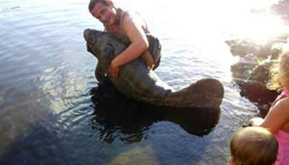 Touch a Manatee, Spend Six Months in Jail