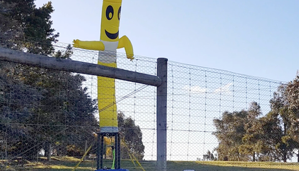 In Australia, Inflatable Tube Dancers Scare Dingoes Away From Livestock