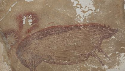 45,000-Year-Old Pig Painting in Indonesia May Be Oldest Known Animal Art