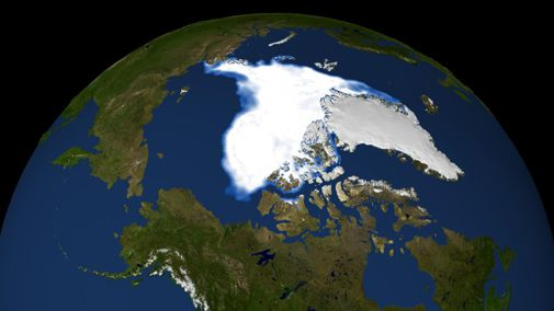 Arctic sea ice faces extinction as the planet warms up.