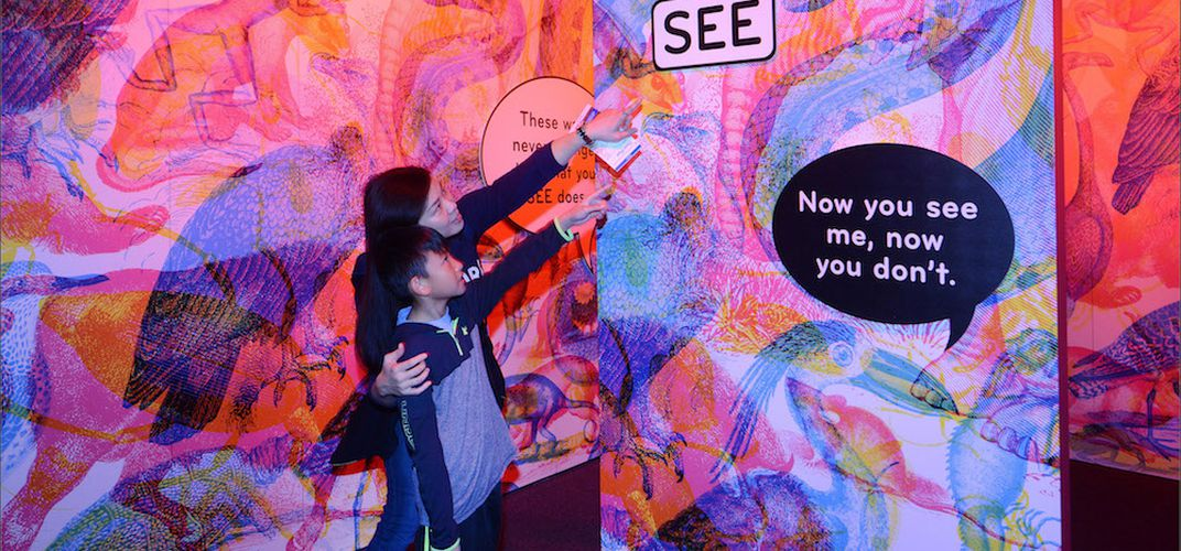 Caption: See the World Through the Eyes of a Butterfly at a New Exhibit on the Senses
