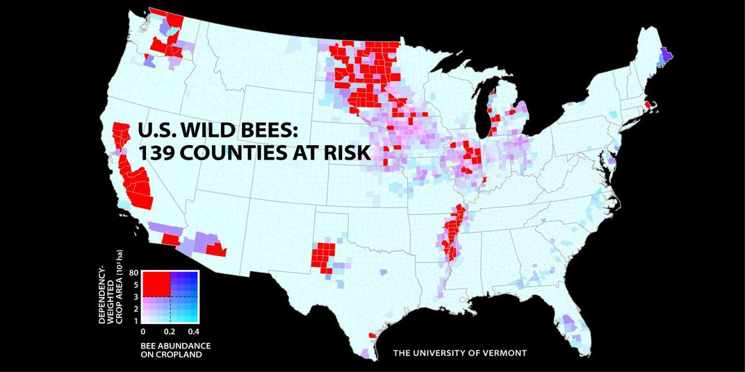New map highlights bee population declines across the us smart a new study of wild bees identifies 139 counties in key agricultural regions of california the pacific northwest the midwest west texas and the freerunsca Gallery