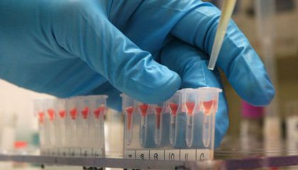 The Mystery of Human Blood Types