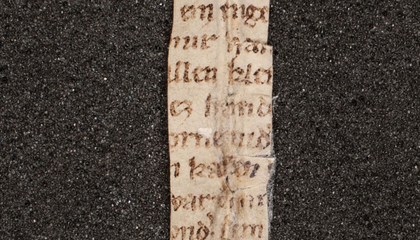 Fragment of 'The Rose Thorn,' a Poem About a Talking Vulva, Dated to the 1300s