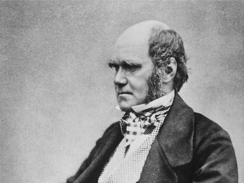 A black and white photograph of Darwin, seated and turned slightly away from the viewer, looking serious with bushy eyebrows and in a waistcoat and checkered pants
