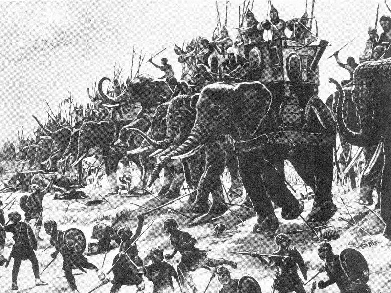 0000war-elephants.jpg
