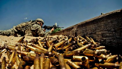 Department of Defense Calls for Biodegradable, Seed-Planting Ammo