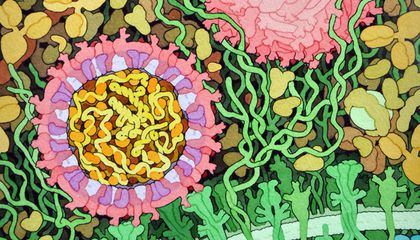 This Painting Shows What It Might Look Like When Zika Infects a Cell