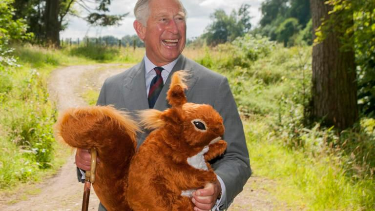 Prince Charles Squirrel