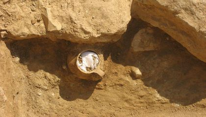 Ancient Athenians Used a Jar Filled With Chicken Bones to Curse Their Enemies