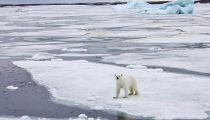 Podcast: Does Anybody Even Care About the Arctic Anymore?